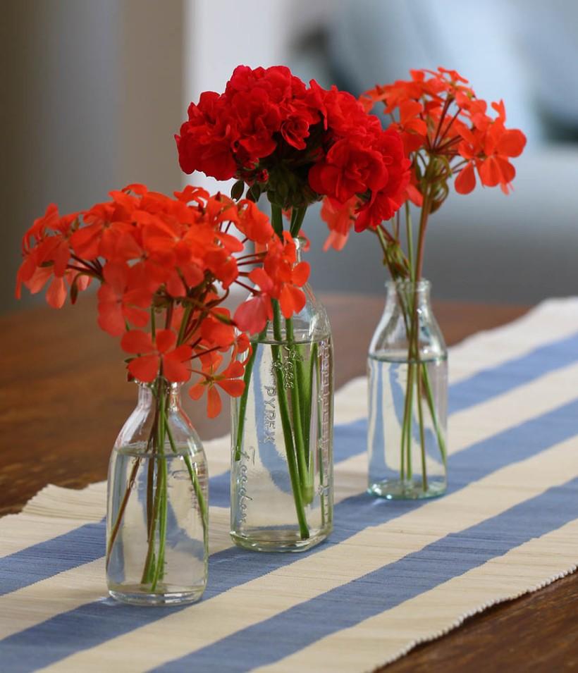 Geraniums -Lilibet Stanley