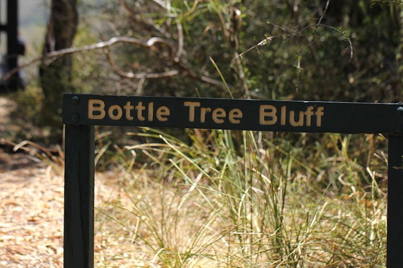 Bottle Tree Bluff sign -Lilibet Stanley