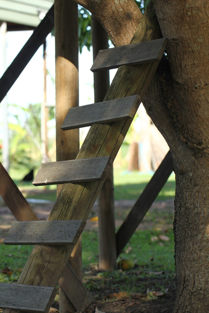 treehousesteps-Lilibet Stanley